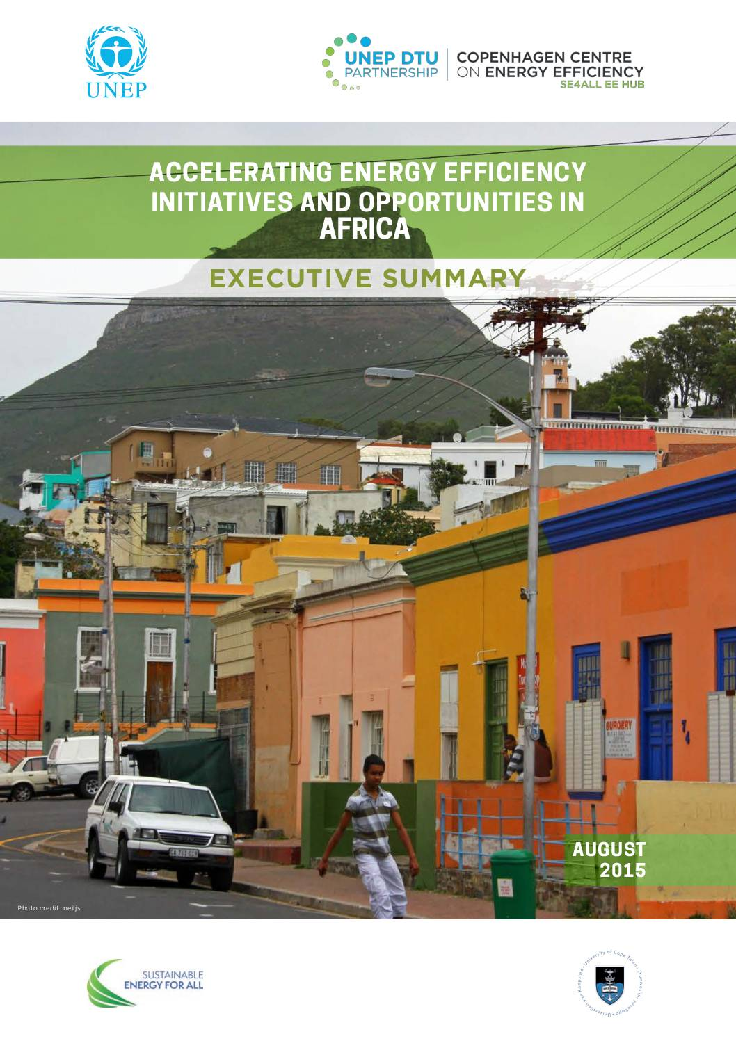 Executive Summary – Accelerating Energy Efficiency Initiatives in Africa